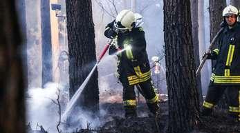 Feuerwehrleute löschen einen Waldbrand bei Oranienburg. In einem Waldstück im nördlichen Brandenburg war in der Nacht zu Ostermontag ein großes Feuer ausgebrochen.