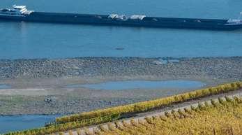 Ein Frachtschiff fährt dicht an freiliegenden Sandbänken und Felsen vorbei. Monatelange Trockenheit und ausbleibende Niederschläge hatten den Wasserstand des Rheins im vergangenen Jahr auf ein Minimum schrumpfen lassen.