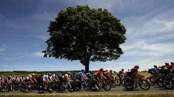 Am fünften Tag der Tour de France wird Spitzenreiter Julian Alaphilippe wieder zu den Favoriten gehören.