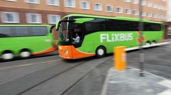 Busse von FlixBus fahren inFrankfurt.