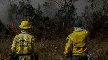 Mitarbeiter des IBAMA, der brasilianischen Umweltbehörde, stehen vor einem Brand in der Region Manicoré im Amazonasgebiet.