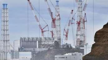 Vor Acht Jahren kam es im Atomkraftwerk Fukushima Daiichi nach einem Erdbeben zum Super-Gau.
