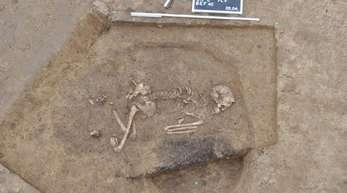 Ein Skelett liegt in einem Grab aus dem 52. Jahrhundert vor Christus, das bei Ammerbuch freigelegt wurde.