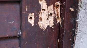 Einschusslöcher an der Synagogentür zeugen von dem Terroranschlag.