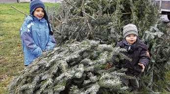 Herbert Gabriel - Auch Luca (5) und Nick (2) schleppten ihren ausrangierten Weihnachtsbaum an die Griesheimer Gottswaldhalle, und die Eltern spendeten für den guten Zweck.