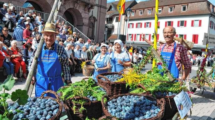 Die Altschweierer schwelgen in Nostalgie: Der Obst- und Gartenbauverein beim Festumzug 2017.