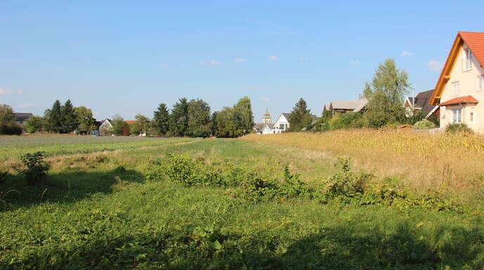 Beim geplanten Wagshurster Baugebiet Langmatt Rötz II gibt es weitere Verzögerungen, wie am Mittwoch im Ortschaftsrat zu erfahren war.