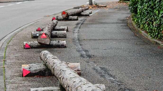 Ein Önsbacher Ortschaftsrat kann diese Bäume als Parkplatzsperre nicht mehr länger mitansehen.