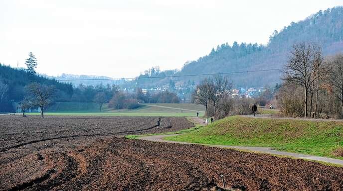 Die Ortsgruppe Lahr des Naturschutzbundes spricht sich gegen eine weitere Zerschneidung des Schuttertals durch die geplanten Trassen der Ortsumgehung aus.
