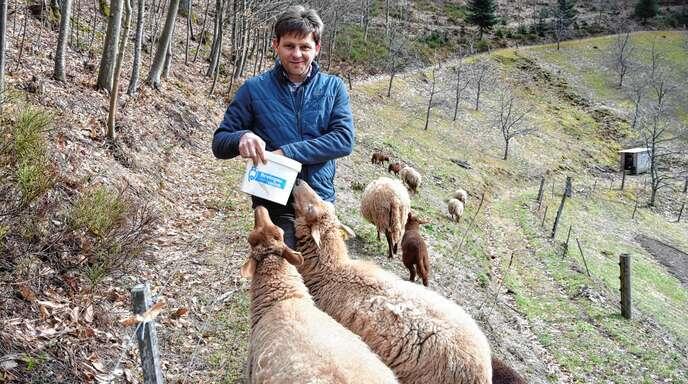 Nachdem ein Wolf in Oppenau zwei Schafe getötet hat, fürchtet Fritz Vogt um seine Tiere bei Lierbach. Die geforderten Schutzmaßnahmen sieht er aufgrund der Steillage kritisch.