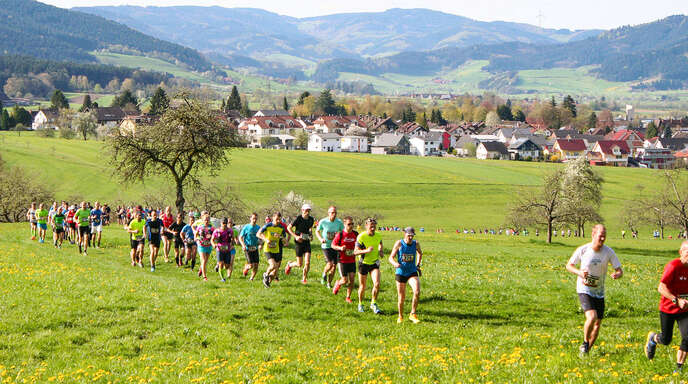 Der Trail in Zell a. H. punktet durch seine interessante und abwechslungsreiche Streckenführung in herrlicher Schwarzwaldlandschaft.