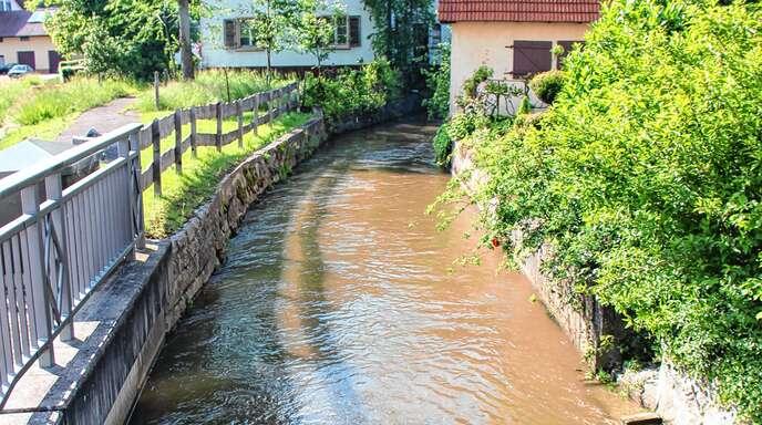 Der Mühlbach (hier bei der Lindenbrücke) in Großweier war am Montagabend prall gefüllt und drohte überzulaufen.