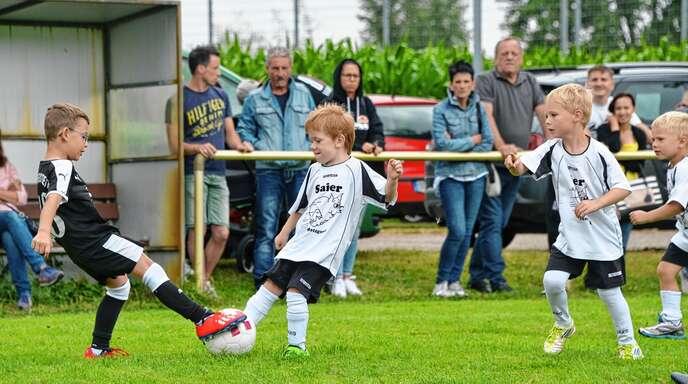 Beim Sportfest des VfR Rheinbischofsheim jagten bereits Bambini das runde Leder.