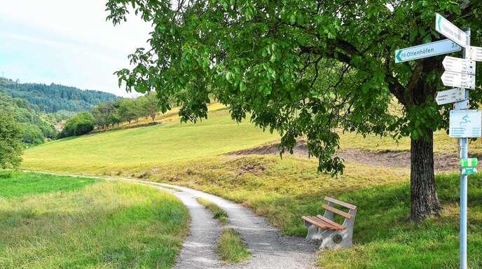 Der Kappelrodecker Gemeinderat vergab am Montagabend den Auftrag zum Bau des unteren Abschnitts des Achertal-Radwegs.