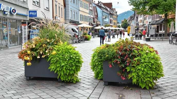Mehrere große Blumenkübel hat die Stadt zu Beginn und am Ende der Fußgängerzone aufgestellt. Sie sollen als Schikane dienen und Autofahrer von der Weiterfahrt in den gesperrten Bereich abhalten.
