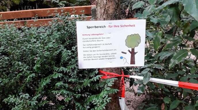 Wegen Baumfällarbeiten müssen Spaziergänger für ein paar Tage die Lourdesgrotte meiden.