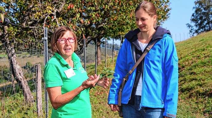 Ulrike Armbruster (links) zeigt Stefanie Bäuerle vom Naturpark Schwarzwald Mitte/Nord was es mit dem »Superfood« Brennnessel auf sich hat.