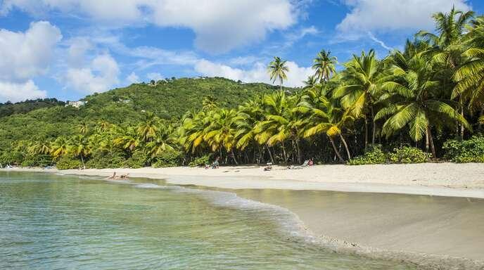 Bilder aus der Karibik animieren Menschen mit Fernweh dazu, draufzuklicken. (Symbolbild)