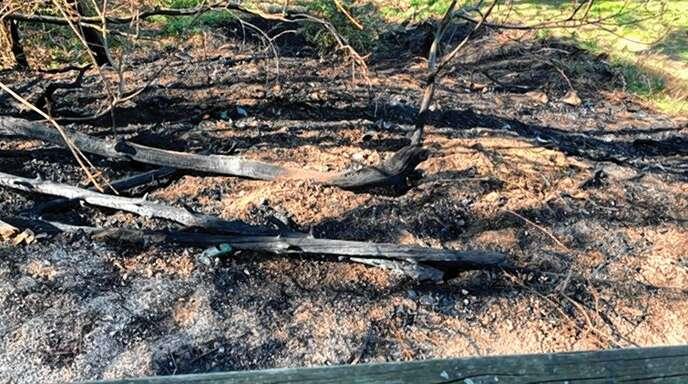 Bei der Wolfsgrube oberhalb von Zell-Weierbach ist es am Sonntagnachmittag zu einem Flächenbrand gekommen. Die Ursache ist noch unklar.