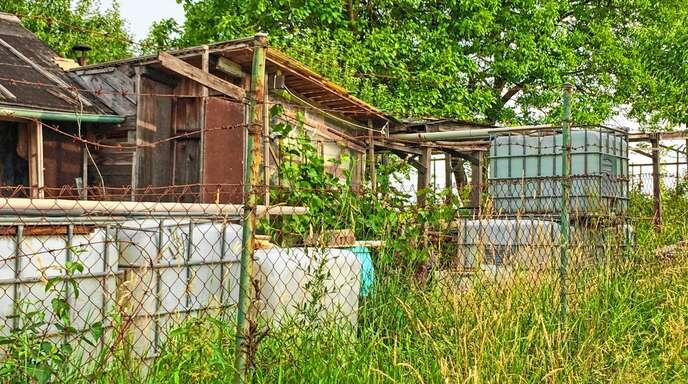 Nicht alle Hütten im Außenbereich sind vorschriftsgemäß errichtet worden. Die Offenburger Stadtverwaltung möchte illegalen Bauten entgegenwirken.