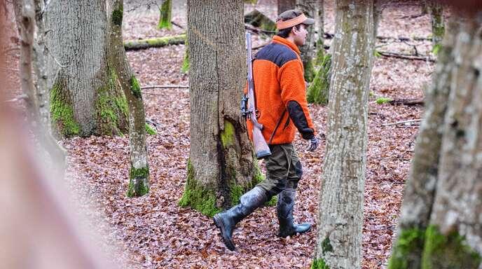 Treibjagden sind zwar nach wie vor erlaubt, müssen aber unter bestimmten Schutzbestimmungen stattfinden, beispielsweise ohne gemeinsame Ansprachen oder Auftritte von Jagdhornbläsern.