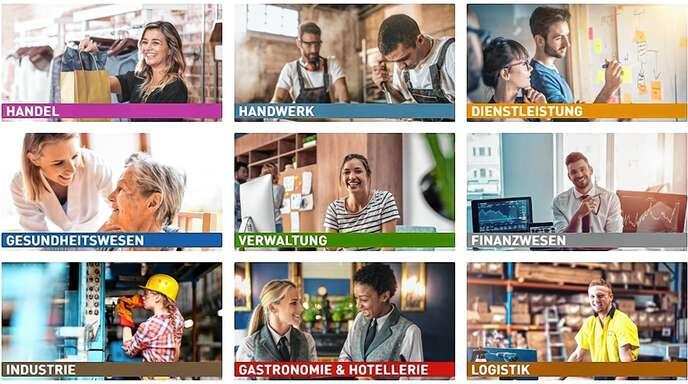 Diese Branchen werden auf der digitalen Berufsmesse vertreten sein.
