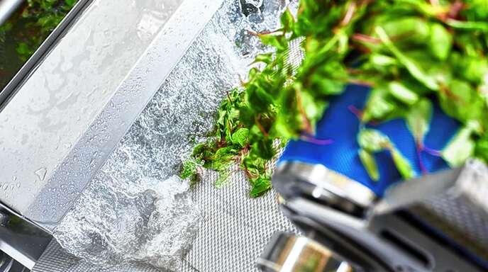Die KRONEN-Profis wissen, wie man junges Gemüse optimal wäscht.
