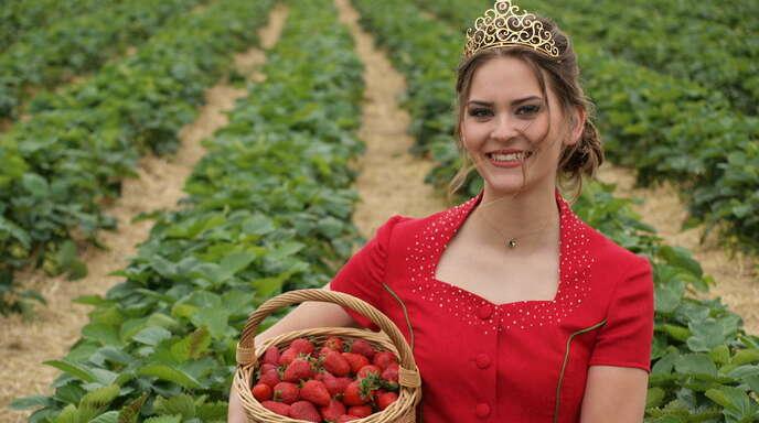 Auch in diesem Jahr wird Erdbeerkönigin Anne Obrecht eine Woche lang auf dem elterlichen Hof in Bottenau bei der Erdbeerernte helfen.