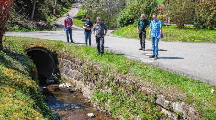 Gewässerschau in Oberharmersbach: Die Kommission mit von links Patrick Thiel, Heike Lehmann, Stefan Lehmann, Hans Lehmann und Bürgermeister Richard Weith kam zu einem insgesamt zufriedenstellenden Ergebnis.