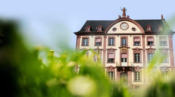 Offenburg will bis 2050 klimaneutral werden. Die Stabsstelle Stadtentwicklung arbeitet daher an der Fortschreibung des Klimaschutzkonzepts.