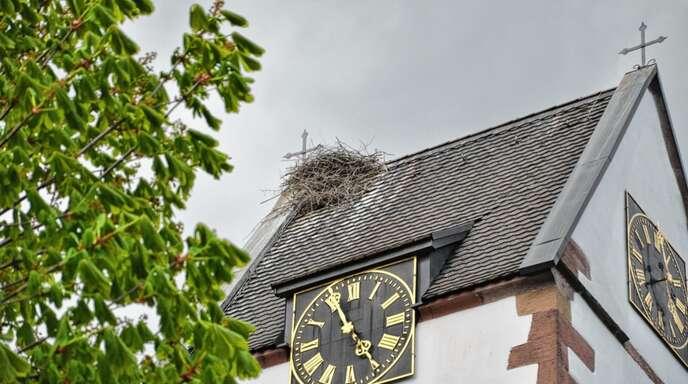 Das Nest auf Wolfachs Kirchturm hielt den stürmischen Böen stand – doch wird es wohl schon bald verwaist sein. Am Mittwochnachmittag harrte ein Storch noch im Nest aus, ohne Unterstützung des Partners wird das nach Sicht der Experten aber nicht mehr lange funktionieren.