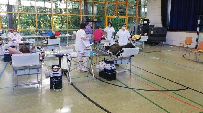 In der Kehler Niedereichhalle ließ das Fachpersonal am Freitag zahlreiche Freiwillige zur Ader.