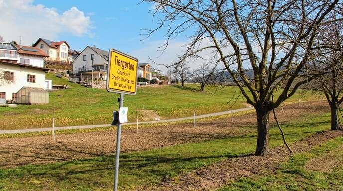 Der Bauplatzpreis für den Tiergartener Tanzberg steigt durch den jüngsten Gemeinderatsbeschluss.