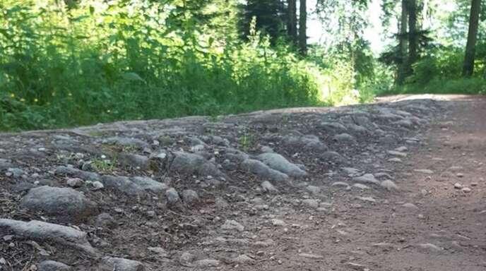 Der schlechte Zustand der Wege im Bereich Brandeck ist laut ForstBW offensichtlich.
