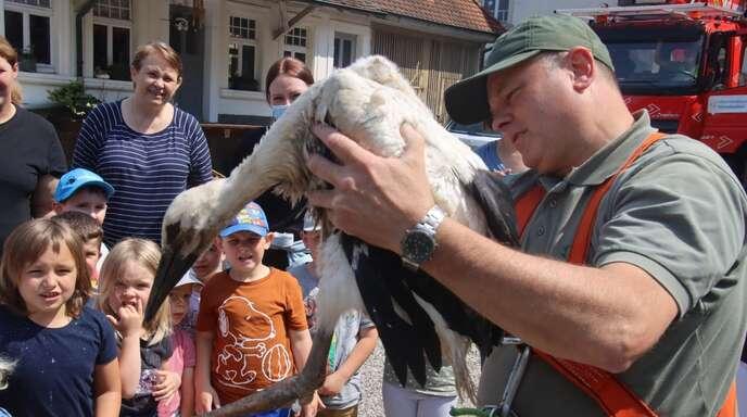 Jürgen Vogelbacher mit der jungen Storchendame. Die Kinder schauen interessiert zu.