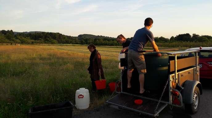 Zwei Tümpel bei Elgersweier stehen kurz vor dem Austrocknen. Helfer schaffen Wasser herbei, um die dort lebenden Kaulquappen und Amphibien zu retten.
