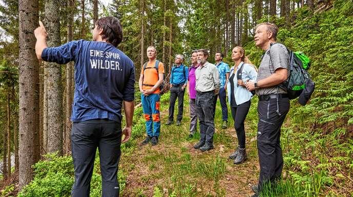 Rundgang durch das Waldklassenzimmer im Nationalpark (v. l.): Sebastian Schwab, Clemens Fritz, Markus Stiepermann, Ralf Schmitt, Volker Ihle, Jochen Berger, Liza Kirchberg und Markus Dauber.