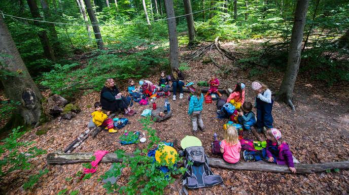 Der hohe Stellenwert eines Waldkindergartens ist unter Pädagogen der frühkindlichen Erziehung unbestritten. Dieser soll den Kindern einen unmittelbaren Zugang zur Natur ermöglichen.