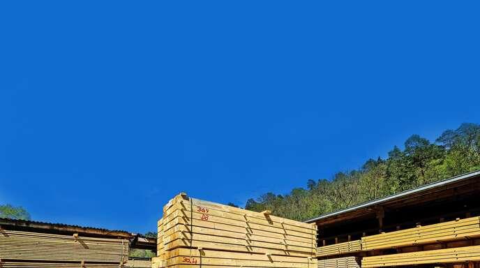 Holz war im ersten Halbjahr dieses Jahres ein teures Gut.