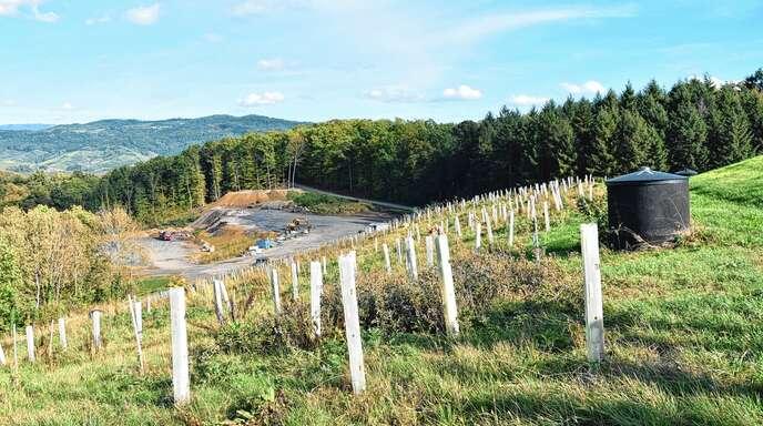 Bis zu zehn Meter hoch türmt sich die Erde in der Deponie Meisenbühl. Die Hügel wurden modelliert und renaturiert. Das bietet auch Chancen für Ausgleichsmaßnahmen.