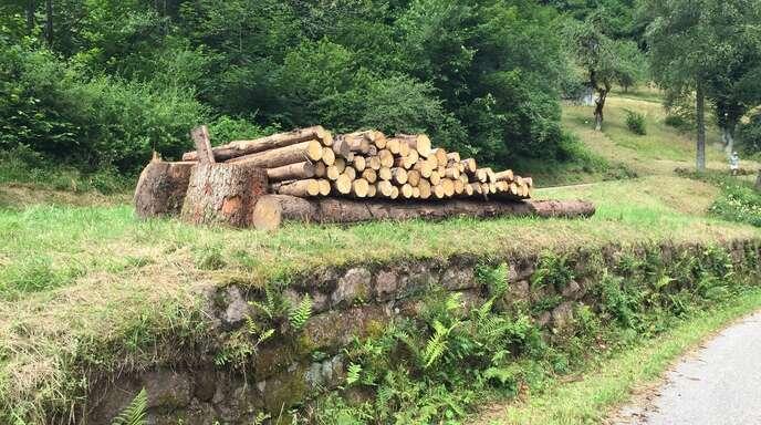 Die Holzverladerampe an der Auffahrt Mühlengrund ist immer noch nützlich, wenn auch nur für eine kleine Holz-Zwischenlagerung.