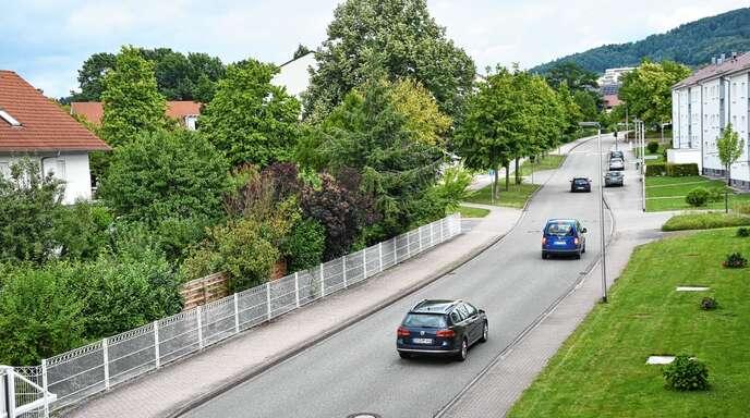 Seit dem Ausbau der Straßburger Straße hat sich das Verkehrsaufkommen erhöht. Die Anwohner wollen deshalb ein Tempolimit und ein Lkw-Verbot.