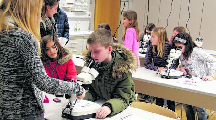 Einen Einblick in den Schulalltag erhielten die künftigen Fünftklässler und ihre Eltern in den Fachräumen. Dabei durften sie auch Blütenblätter mit der Stereolupe untersuchen.
