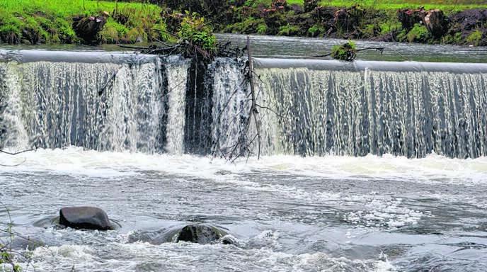 Rund zwei Meter stürzt die Rench bei der Hoferlesmühle in die Tiefe. Eine Nutzung der Wasserkraft an dieser Stelle hat das Land überprüft, aber verworfen.