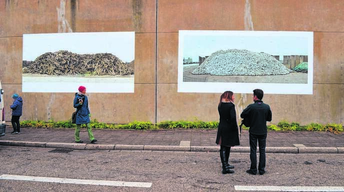 Kohle, Sand oder Schrott: Die Karlsruher Künstlerin Gabriele Engelhardt fotografierte die »Kehler Berge«.