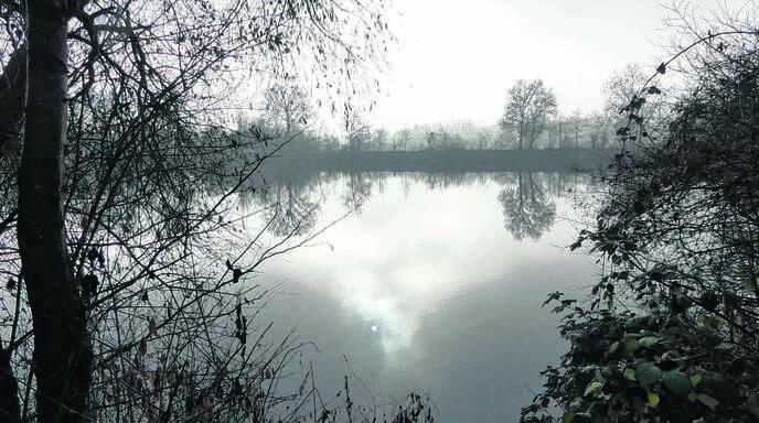 Heute ruht der »Alte Baggersee« bei Ottenheim still vor sich hin – außer im Sommer, wenn heiße Temperaturen ins kühle Nass locken. Entstanden ist er durch den Kiesabbau, den die Firma Vogel-Bau seit 1938 an dieser Stelle betrieb.