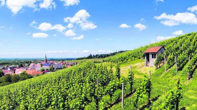 Der Oberkircher Ortsteil Tiergarten hat derzeit eine Gaststätte weniger.