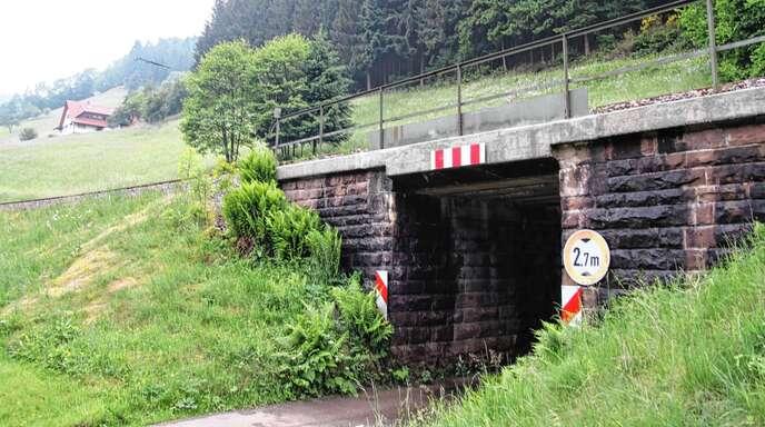 Lediglich Fahrzeuge mit einer Maximalhöhe von 2,7 Metern können die Bahnunterführung zum vorderen Halleckle passieren. Der Ortschaftsrat Ibach will das ändern.