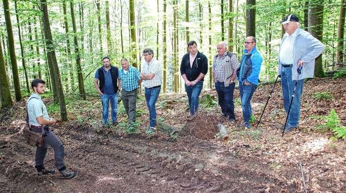 Mitten im »Schmuckstück« im Ibacher Wald: Revierleiter Lukas Ruf (links) informierte den Ortschaftsrat über die Buchen-Durchforstung im Distrikt »Birkhof«.