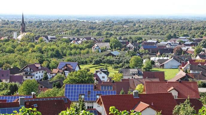 Bei der Entwicklung des Mösbacher Baugebietes Bühli geht es weiter voran, drei Ausgleichsmaßnahmen sorgen für 600000 Ökopunkte.